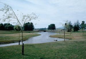 jp pond 1977